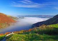 A valley submerged in a sea of mist near Llanidloes