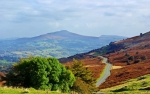 An autumnal day on Mynydd Llangynidr. The road leads the eye towards Sugar Loaf mountain on the horizon.
