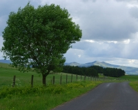 21.A winding lane leads into another distant view of the Beacons