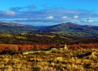 A frosty December morning looking out to Sugar Loaf from Llangynidr Mountain