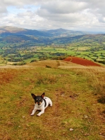 Eric on Tor y Foel with Sugar Loaf mountain in the distance