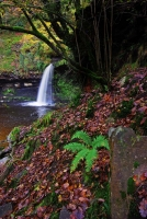 Sgwd Gwladus on the River Pyrddin, Pontneddfechan